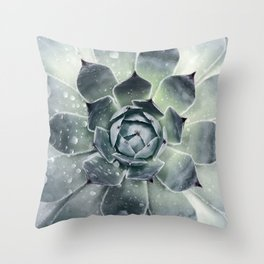 Botanical Print, Agave, Cactus Print, Succulent Art Throw Pillow