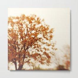 fall is just a dream Metal Print