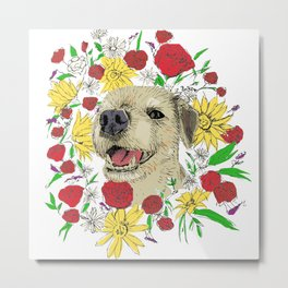 Lilly in Colour - Border Terrier Metal Print