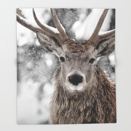 WINTER STAG Throw Blanket