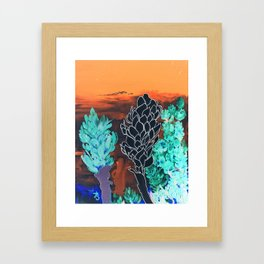 DESERT NIGHT Alpinia Purpurata Framed Art Print