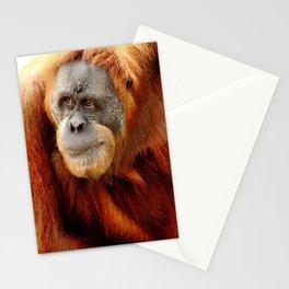 Observant Orangutan Stationery Cards