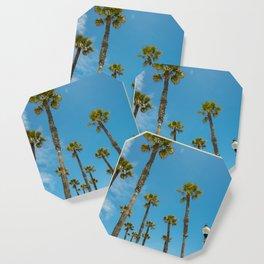 Palms and Sun Coaster