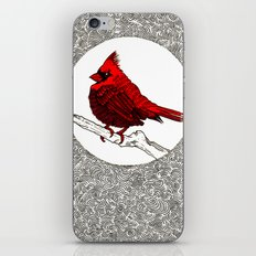 A Red Cardinal iPhone Skin