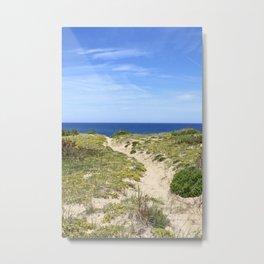 Through the Dunes Metal Print