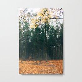 Spirit of Autumn Metal Print