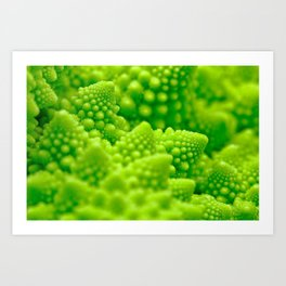 Macro Romanesco Broccoli Art Print