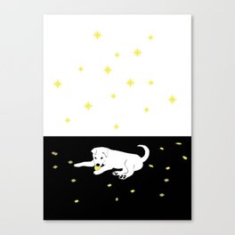 Sharkie with stars Canvas Print