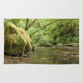 Creek bed Rug