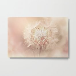 Pink Dandelion Flower - Floral Nature Photography Art and Accessories Metal Print