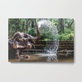 Elephant Bathing Metal Print