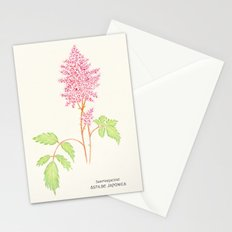 Botanical Sketches 4: False Spirea Stationery Cards