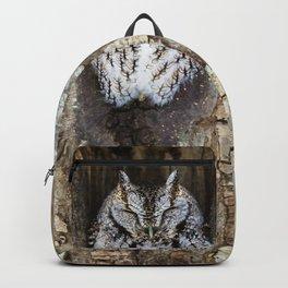 Sleeping Screech owl Backpack