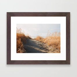 Trail to the beach Framed Art Print
