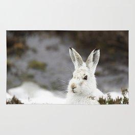 white mountain hare Rug