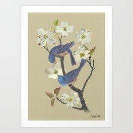 Bluebirds in Dogwood Tree Art Print