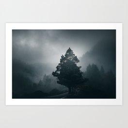 Dark woods 6 Art Print