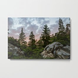 The Glory of Nature Metal Print