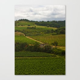 landscape in southern france Canvas Print