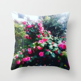 Camelias flowers. Throw Pillow