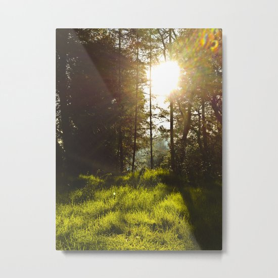 Morning Atmosphere Metal Print