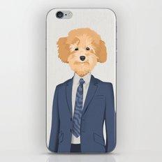 Posing Poodle iPhone & iPod Skin
