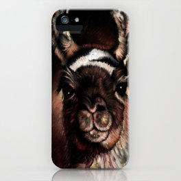 llama Cusco Peru iPhone Case