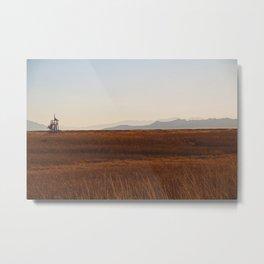 Field of Light Metal Print