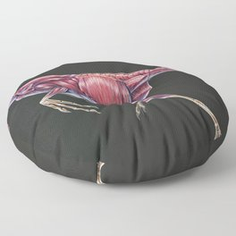 Citipati Osmolkae Muscle Study (No Labels) Floor Pillow