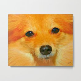 Pomeranian Dog Art Print Metal Print