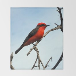 Mr. Vermillion Flycatcher Throw Blanket