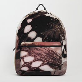 coneflower and butterfly Backpack