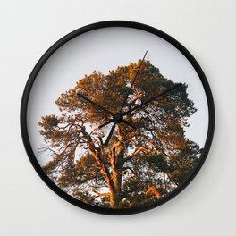 Half Tree Wall Clock