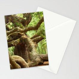 Angel Oak 1 Stationery Cards