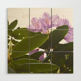 Pink Azalea Flowers with Spring Green Leaves Wood Wall Art