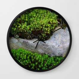 Vibrant Moss Wall Clock