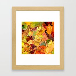 The Fall Forest Floor Framed Art Print