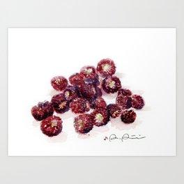 Backyard Berries Art Print