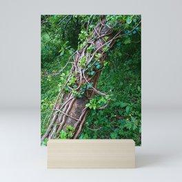 The Longevity of Fae Mini Art Print