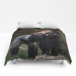 Gorilla Chief Comforters