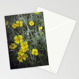 Unfocusedlove_01 Stationery Cards