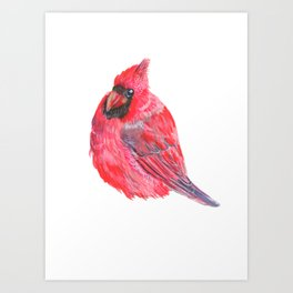 Red Cardinal, Cardinal, Watercolor Art Print