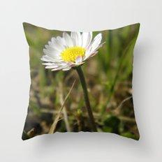 Daisy... Throw Pillow