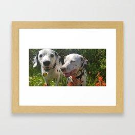Dalmatian Love Framed Art Print