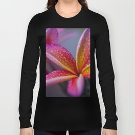 Windows into Nature Long Sleeve T-shirt