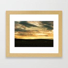 Iceland - Sunset with sheep (Leica M3 & Kodak film) Framed Art Print