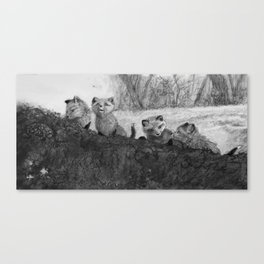 Fox Kits Sketch Canvas Print