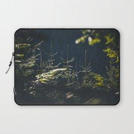 Spruce tops in Slovakia Laptop Sleeve