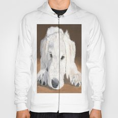 White Labradoodle Pup Hoody