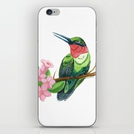 Summer Hummingbird iPhone Skin